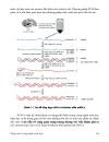Nhập môn công nghệ sinh học PGS TS Nguyễn Hoàng Lộc