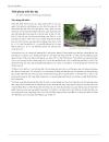 Lịch sử Việt Nam