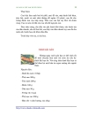 1158 Món ăn Việt Nam