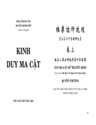 Kinh Duy Ma Cật Việt dịch