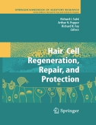 Hair Cell Regeneration Repair and Protection