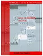 Molecular Biology of the Gene 5th Edition