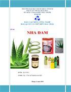 Tìm hiểu về cây nha đam và ứng dụng trong sản xuất thực phẩm