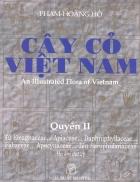 Cây cỏ Việt Nam