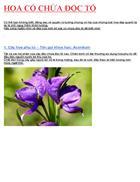 Hoa có chứa độc tố