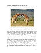 Thông tin về động vật Phần I