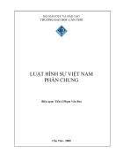 Giáo trình Luật Hình sự Việt Nam