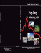 Báo cáo phát triển Việt Nam năm 2009 Huy động và sử dụng vốn