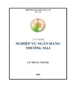 Giáo trình nghiệp vụ các ngân hàng thương mại TG Lê Trung Thành