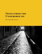 EBOOK Notes from the Underground