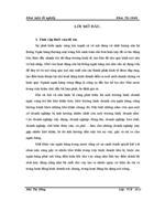 Giải pháp phòng ngừa và hạn chế rủi ro tín dụng tại Ngân hàng thương mại cổ phần Quốc Tế Việt Nam chi nhánh Thanh Xuân