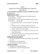 Công ty tnhh kiểm toán và định giá Việt Nam-vae